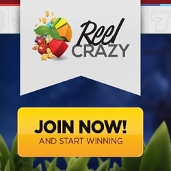 Reel Crazy